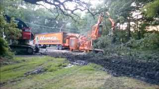 Giant Industrial Tree Shredder | Large Wood Chipper Devouring Whole Trees