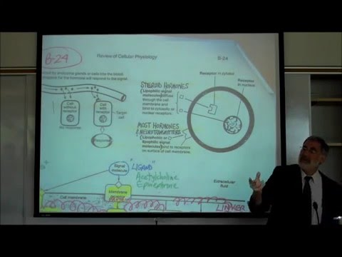 PHYSIOLOGY; REVIEW OF CELL MEMBRANES by Professor Fink
