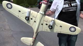 FMS P40 Warbird