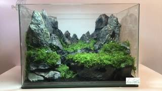 getlinkyoutube.com-Aquascaping réalisation - Laurent Garcia - Aquarilis
