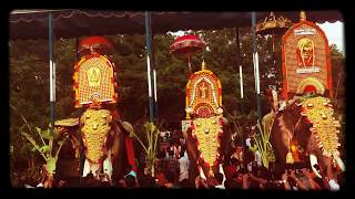 getlinkyoutube.com-Thechikottu Ramachandran Vs Vishnu sankar  thalapokkam fight - Elephants in Kerala