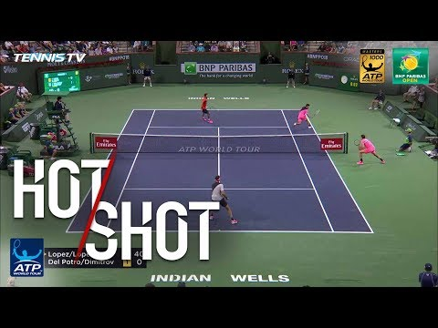 Hot Shot: Dimitrov Goes Around The Net