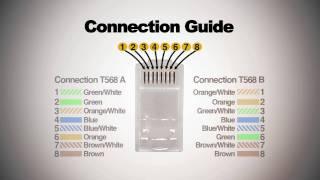 getlinkyoutube.com-How to make Cat6 patch cord