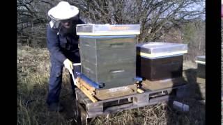 getlinkyoutube.com-Pčelarstvo - vaganje i zamjena podnice