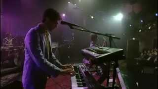 getlinkyoutube.com-MGMT Live on David Letterman FULL SHOW