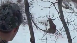 getlinkyoutube.com-Amazing hunting kill shots