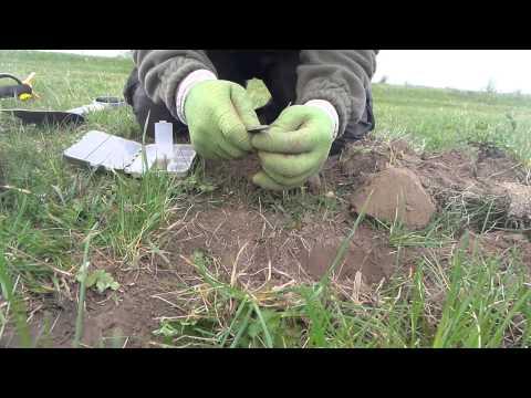 Раскопки в поле в весенний период