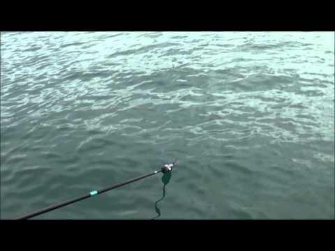 Εγγλέζικο ψάρεμα με ψωμί real fishing