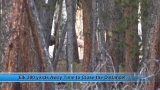 getlinkyoutube.com-Gunnison Part 6- Awesome Big Bull Elk Hunt