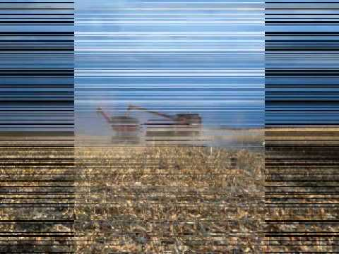 Oberg Family Farms 2011-Harvest Time.wmv