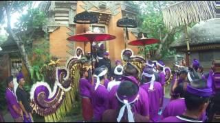 getlinkyoutube.com-The Royal Cremation Ceremony ubud 2016