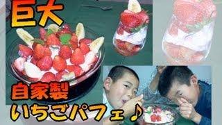 getlinkyoutube.com-【シマいリスのスイーツ】 おうちで作る!巨大いちごパフェ!!(ひたち姫