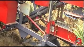 getlinkyoutube.com-Presentation 2014 - ERME - Mechanization of garlic growing