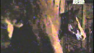 getlinkyoutube.com-Animal Planet Latino - Actividad Paranormal - 2/6