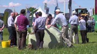 Grassland and Muck 2014: the Machines