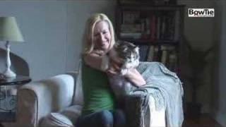 getlinkyoutube.com-Angela Kinsey Behind the Scenes - CatChannel.com