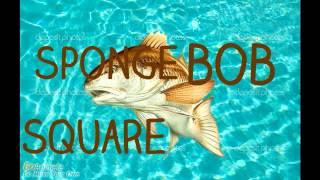 getlinkyoutube.com-Spongebob intro