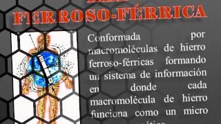 CURSO DE BIOMAGNETISMO MODULO No. 1 GRATIS