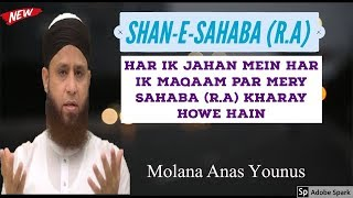 Maulana Anas Younus vol 7 Naat (Shan-e-Sahaba) I Ray of Hope