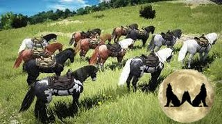 Black Desert Horse Taming/Locations