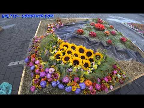 Европейский Фестиваль Цветочных Ковров