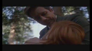 Mulder/Scully - Iris