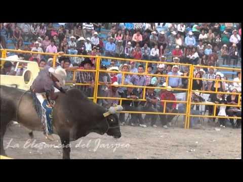 ¡¡JARIPEO ESPECTACULAR!! 1er Torneo de Toros de Reparo Las Jicamas Guanajuato