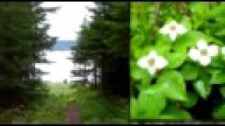 getlinkyoutube.com-Parc provincial Neys Provincial Park