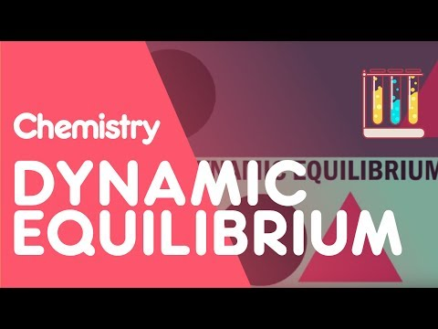 What is Dynamic Equilibrium? | The Chemistry Journey | The Virtual School
