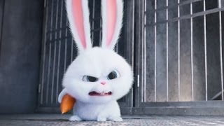 getlinkyoutube.com-The Secret Life of Pets - Supercut | all clips & trailers (2016) Kevin Hart