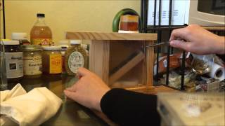 How To Put Bees in a Bee Buddy for Bee Venom Therapy BVT Apitherapy