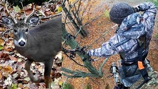 getlinkyoutube.com-Bowhunting Whitetails