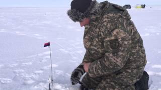 getlinkyoutube.com-Рыбалка по льду озеро Кокай 11.01.2015  НРОсК - Астана