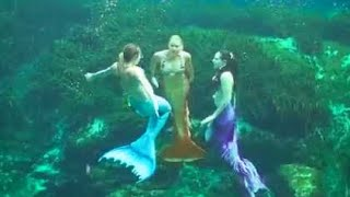 getlinkyoutube.com-Mermaid Job Training & Rehearsal: Mermaid Melissa with Real Life Mermaids