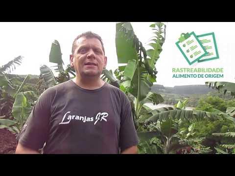 Produção de Banana com Rastreabilidade - Alimento de Origem