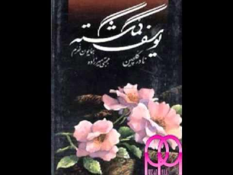 Nader Golchin - Gomgashteh (Hafez).wmv