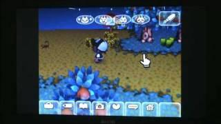 Animal Crossing: City Folk - FREAKY SCORPION!!!