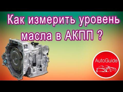Как правильно измерить уровень масла в АКПП?   AutoGuide