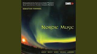 Serenade for String Orchestra in G Major, Op. 11: III. Scherzo. Allegro vivace - Trio. Poco...