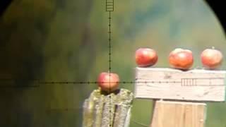 getlinkyoutube.com-FX Royale 500 vs Apple @ 50 yards