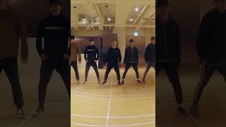 EXO Electric Kiss Dance Practice D.O. Focus(세로캠)