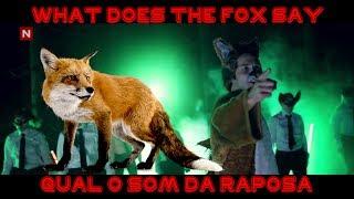 getlinkyoutube.com-O Som da Raposa, Video Inedito mostrando o Som Da Raposa (What Does the Fox Say?)
