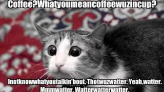 getlinkyoutube.com-FUNNY animals with captions!