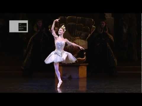 Sleeping Beauty Fairy variation (5)