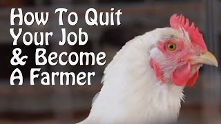 getlinkyoutube.com-Quit Your Job and Farm - PART 1 - 10 Small Farm Ideas, from Organic Farming to Chickens & Goats.