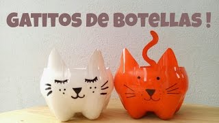 getlinkyoutube.com-Gatitos hechos de botellas de plástico :)