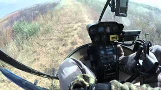 getlinkyoutube.com-Sick Helicopter coyote hunt!