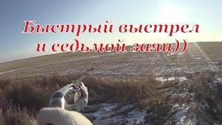 getlinkyoutube.com-Охота на зайцев - Быстрый выстрел