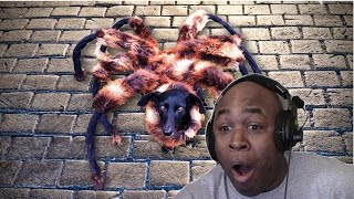 getlinkyoutube.com-BHD Reacts To Giant Mutant Spider Dog