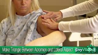 getlinkyoutube.com-Intramuscular Injection Site: Deltoid ~ivyVILOs~(Ivy Tech Community College, School of Nursing)